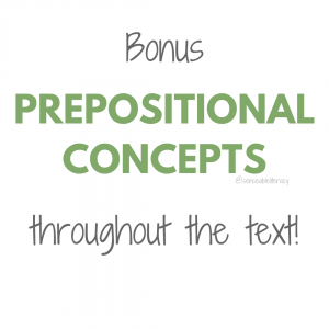 image stating Bonus Prepositional Concepts throughout the text